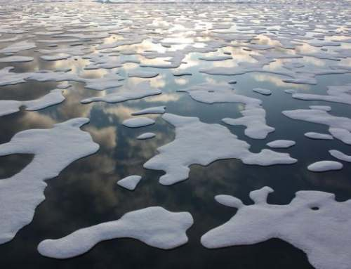 A New UCLA Study Reveals Future Annual Arctic Sea Ice Loss Between 2044-2067