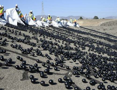 Los Angeles Has 96 Million Plastic Black Balls Floating in its Reservoir to Increase Water Quality and Reduce Evaporation