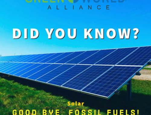 DID YOU KNOW? Bye, bye fossil fuels!
