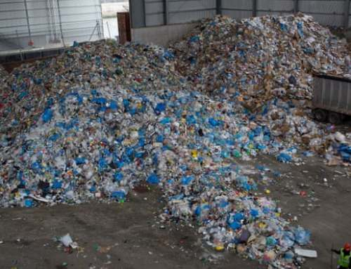 US Generates More Waste and Recycles Less Than Other Developed Nations