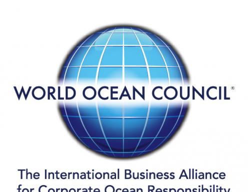 Sustainable Ocean Summit 2019