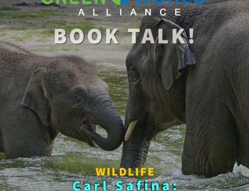 Book Talk: Reading Animals' minds…