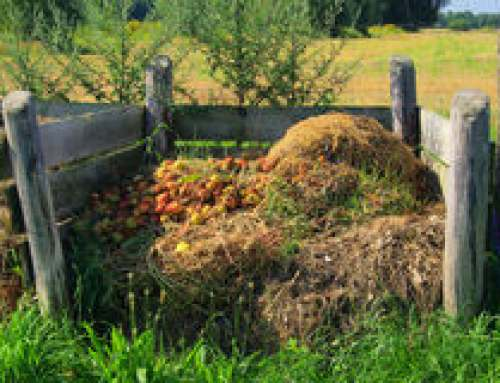 Composting is Gaining Momentum in the Midwest