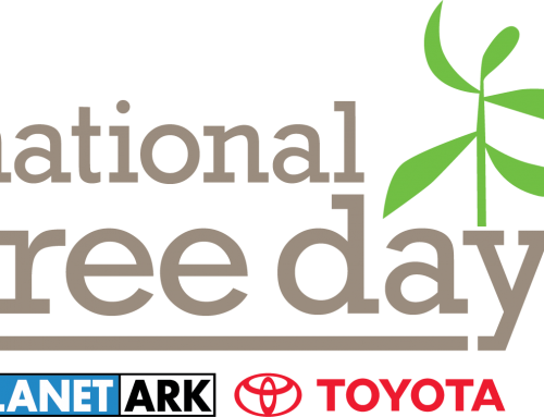 Australia's National Tree Day Takes Place on 7/28